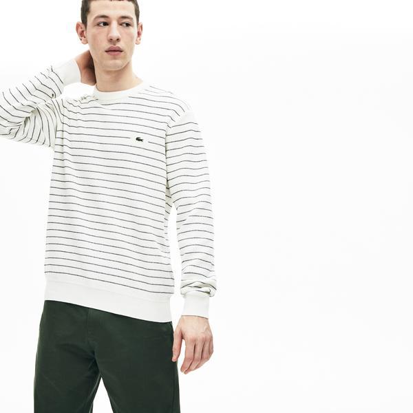 Lacoste Men Sweater