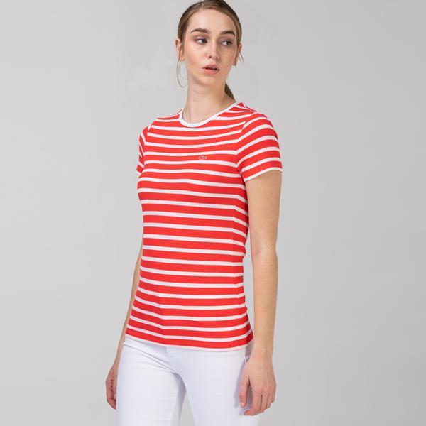 Lacoste Women's Round Neck Striped T-Shirt