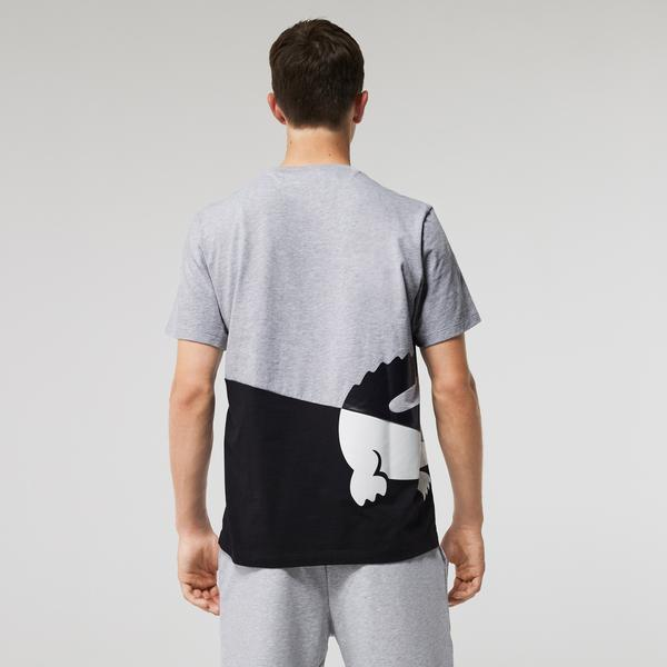 Lacoste футболка домашня чоловіча